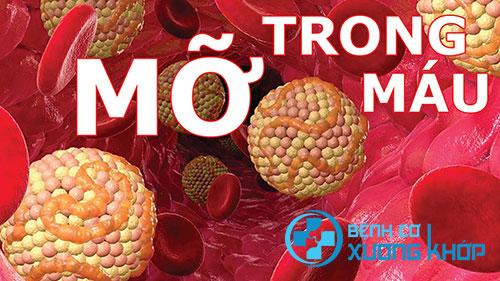 Những tác hại nghiêm trọng của bệnh mỡ máu cao đối với người bệnh