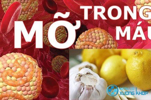 Bài thuốc chanh tỏi giúp điều trị bệnh mỡ máu hiệu quả trong ngày tết
