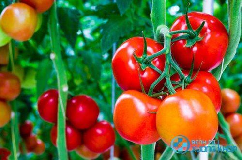 Những thực phẩm người bị huyết áp thấp tuyệt đối không nên ăn