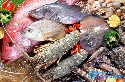 Các loại cá, tôm cho người bệnh đau vai gáy