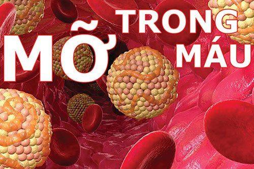 Lượng mỡ trong máu sẽ được giảm xuống đáng kể khi chúng ta ăn uống đúng chế độ khoa học