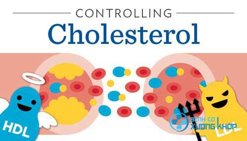 Mức cholesterol cao hay thấp chủ yếu đến từ chế độ ăn uống hàng ngày của chúng ta