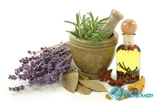Điều trị bệnh gout từ các thảo dược thiên nhiên
