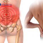 Yếu tố nguy cơ do nghề nghiệp dẫn tới đau lưng dạng thấp